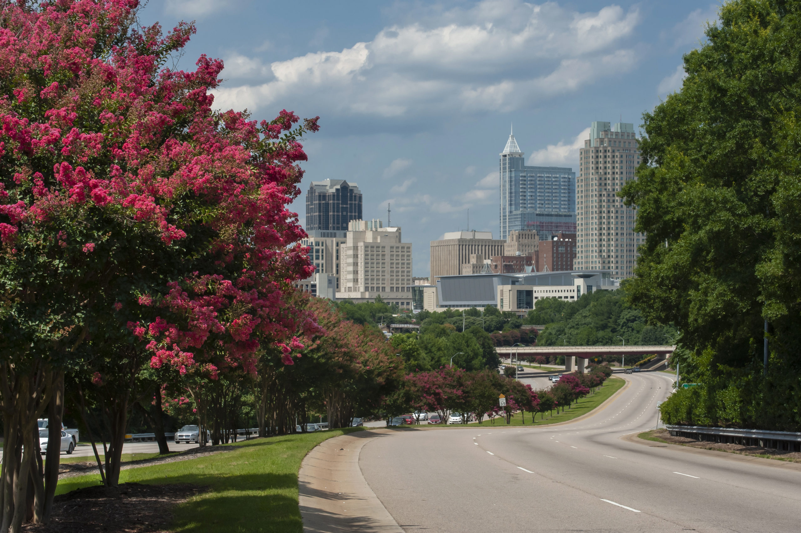 Best Neighborhoods for First-Time Homebuyers in Raleigh, NC